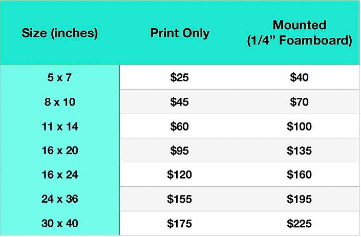 Photo Art Print Prices.jpg