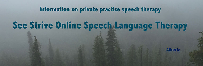 information-speech therapy-speech therapist-online-alberta-2