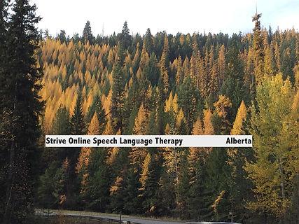 speech therapy-strive online-online-speech therapist-alberta-2222