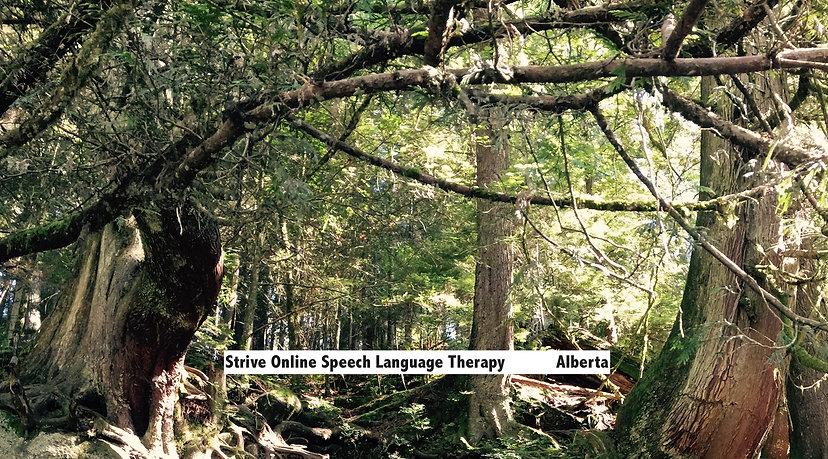 Strive-online-Speech therapy-Speech therapist-Alberta-5