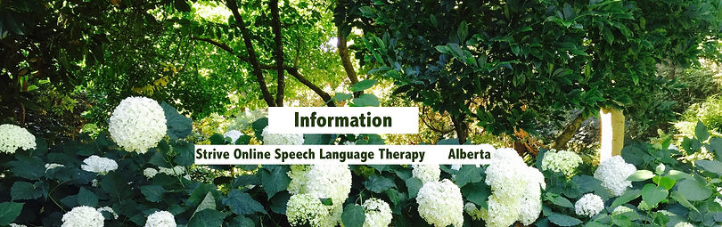 information-speech therapy-speech therapist-alberta-online-1