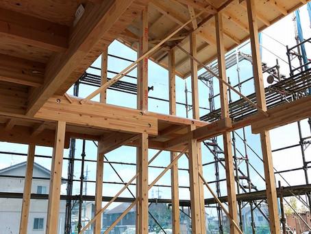 掘り込んだリビングからの吹抜+勾配天井+大開口。高根沢の家。上棟しました。