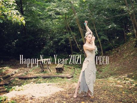 【Happy New Year 2021】