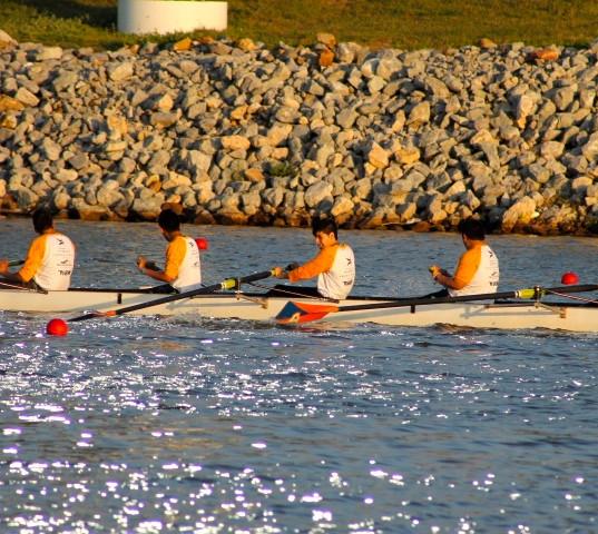 rowing.jpeg