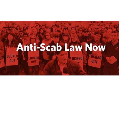 Anti-Scab Law Now