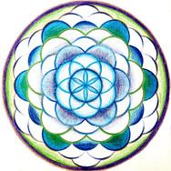 Flower of Life ~ Gaia