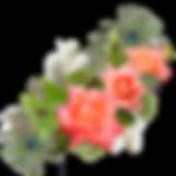 rose-3182696_1280.png