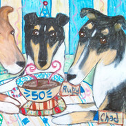Do Smooth Collies Know How to Party?