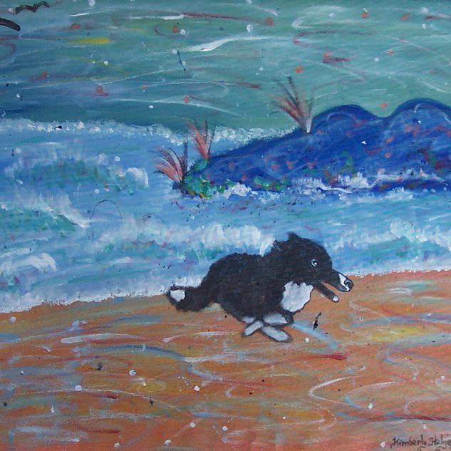 Zowie Herding the Waves