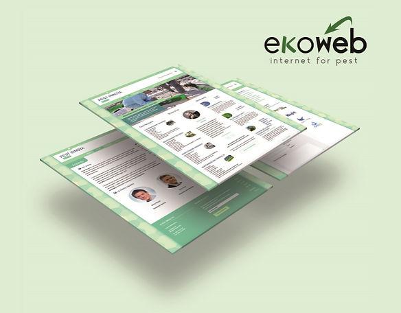Ekoweb / Ekommerce