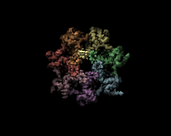 home_proteasome.png