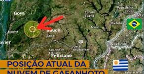Gafanhotos: Nuvem se afasta da fronteira com o Brasil