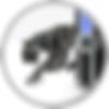 MedSteward - Remote Backup Services