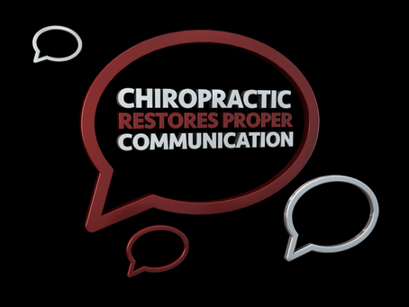 Dr. Zev Mellman- Davie FL Chiropractor Discusses The Significance Between Health & Communication