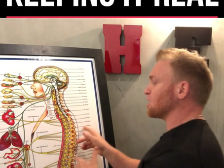 We All Need Chiropractic Care