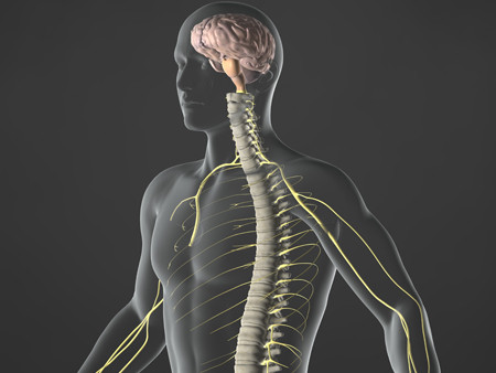 Davie Chiropractor: Tingling and Numbness