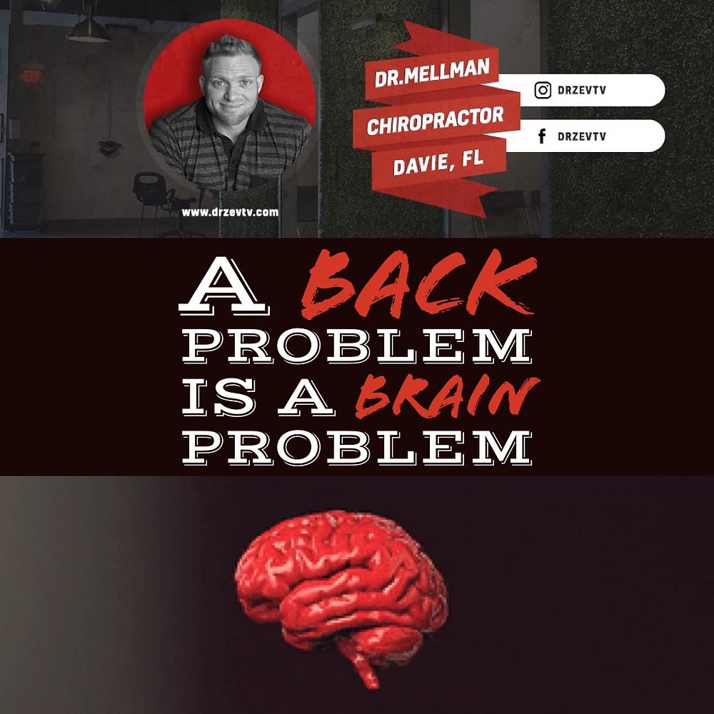 A Chiropractic Blog Post From Davie Chiropractor Dr Zev Mellman