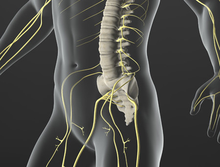Sciatica Relief | Davie Florida Chiropractor
