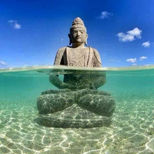 Apnée & Méditation Subaquatique