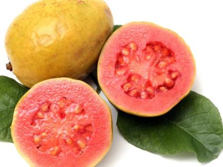 Caribbean Market: Guava