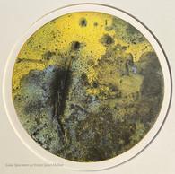 Gaia.Specimen1.2 © 2021 Janet Maher