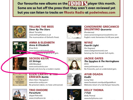 '22 Strings' makes the prestigious fRoots Magazine playlist!