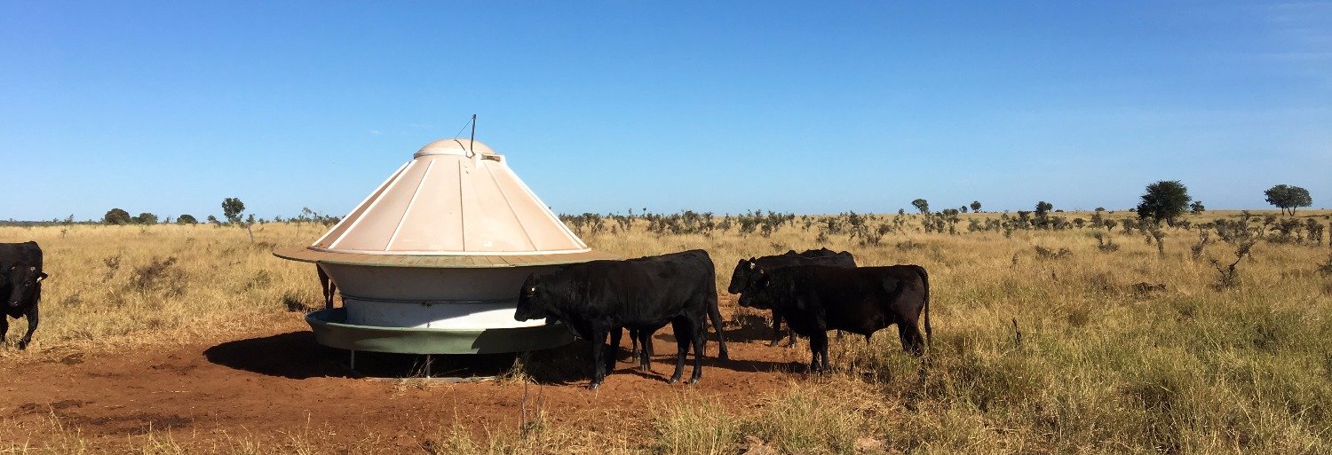 AUSTRALIAN MADE ROUND CATTLE FEEDER