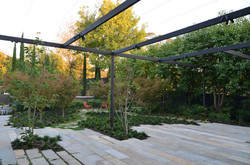 Toorak House rear garden