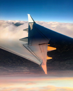 8.25x 10.25plane flipped.jpg