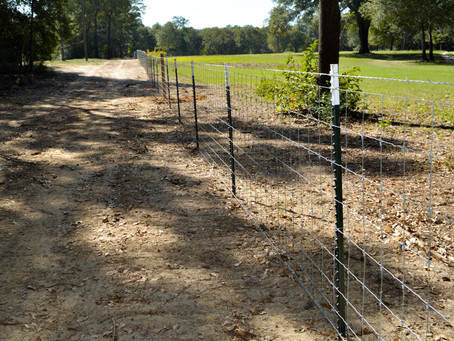 Keep Feral Hogs Off Your Property With Hog-Proof Fencing