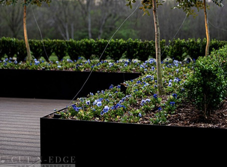 How Important Is Your Landscaping to Your Estate