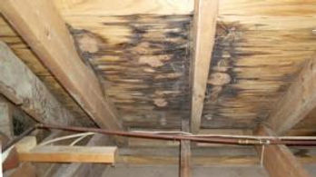 This-is-Rotting-plywood-from-leaky-roof-