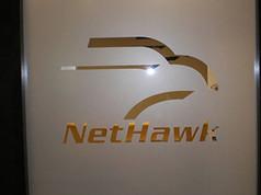 NetHawk