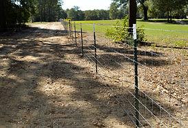 Fence Line 1.jpg