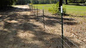 Protect Your Property With Hog Proof Fencing
