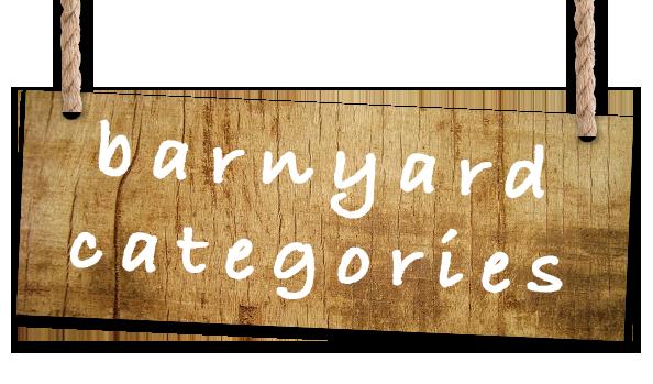 BARNYARD DOLLAR STORE CATEGORIES