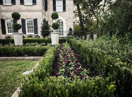 Landscape Management Tips For Spring