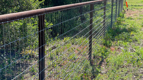 HIGH-TENSILE, FIXED-KNOT WILD HOG FENCING