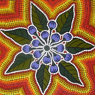 desert art, indigenous art