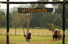 farm-chokchai5.jpg