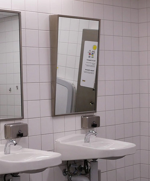 "FTM-2430 24"" x 30"" Accessible Mirror Series"