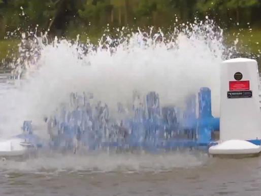 Agitación del agua de cultivo con paletas o burbujeo y su efecto en el agua.