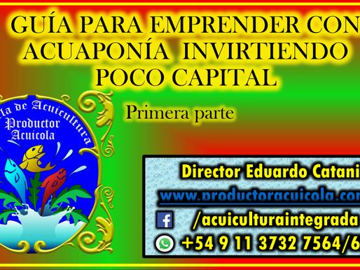 Guía para emprender con Acuaponía invirtiendo poco capital. (Primera parte)