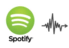 Spotify 5.jpg