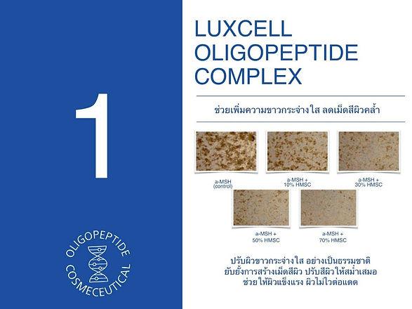 Oligopeptide_๒๐๐๕๑๙_0003.jpg