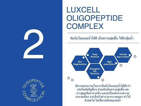 Oligopeptide_๒๐๐๕๑๙_0002.jpg