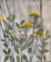 Wild Flowers NA407.jpg