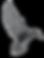 bird_5x.png