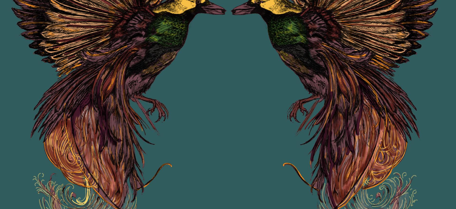 Raggiana Birds