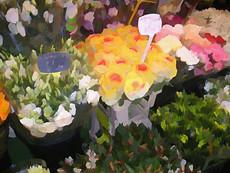 Paris Flower Market II